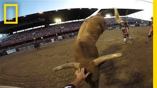 Rodeo Bullfighters Grab Life by the Horns | National Geographic