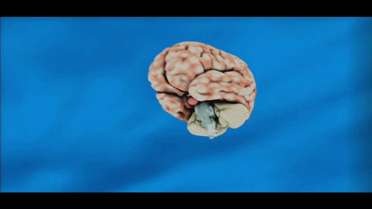 WANT TO TEST YOUR INTELLIGENCE LEVEL CHECK THIS OUT | ONLY ...