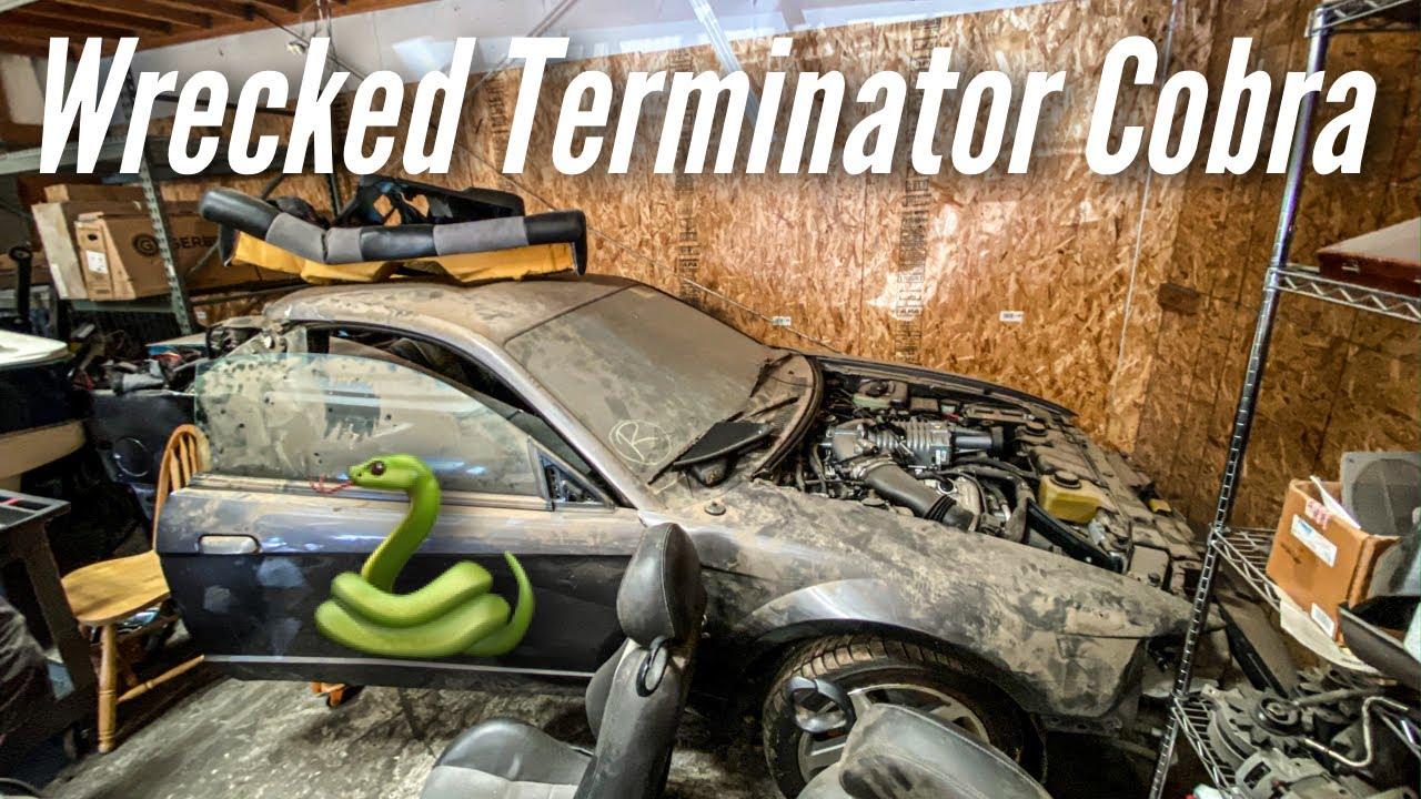 Terminator Cobra 2020