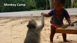 Lovely kid feed Mum monkey and baby monkey, Poor baby monkeys life at Angkor, Monkey Camp part 1237