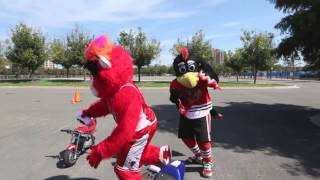 Benny The Bull, Tommy Hawk & Travis Pastrana