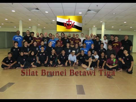 Bruneian Martial Art - Silat Brunei Betawi Tiga (Internal Martial Art)