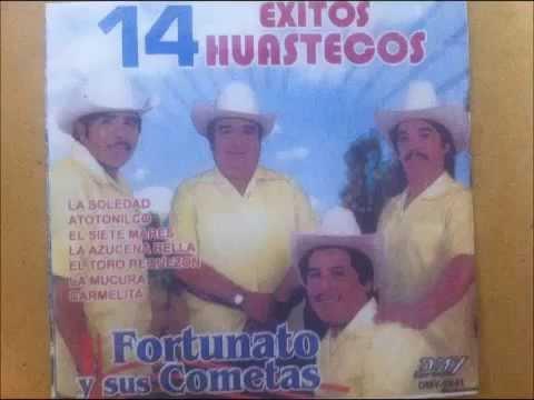 Fortunato y Sus Cometas V11
