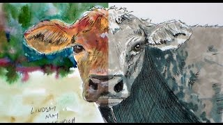 Cow SpeedDraw in Ink with Mixed Media Extra