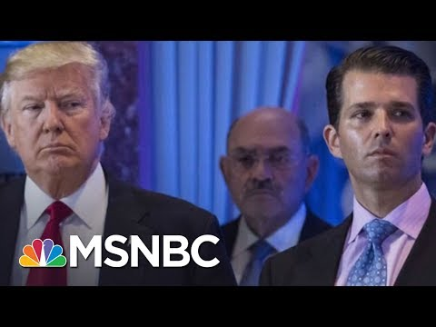 Book Suggests New Aspects Of Potential President Trump Obstruction Case | Rachel Maddow | MSNBC