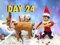"Elf on the Shelf - HONEYMOON!!! ✈️🤓 :: ""Shelf Elf - Season3""  Day 24"