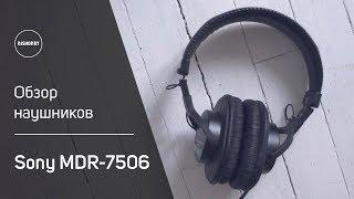 Sony MDR-7506 Обзор классики! Sound Check.
