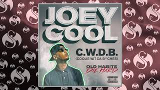 joey-cool-c-w-d-b-coolie-wit-da-b-ches-official-audio
