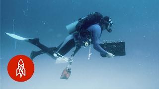 Healing the Ocean With a Garden of Coral