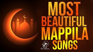 Super Hit Malayalaml Mappila Song Non Stop | Ya Mehjabi Album Full Songs