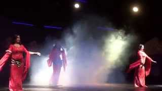 Amwaj Blue Beach Resort & Spa - July 2014 - Belly Dance Thumbnail