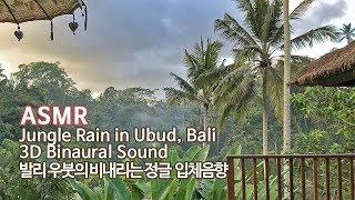 ASMR Jungle Rain 3D Sound in Ubud Bali●비 내리는 정글 입체음향 feat.가믈란 연주 Gamelan Music