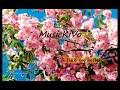 # 35 / Free music for you. Remix. Lauv - I Like Me Better (Miro Remix)
