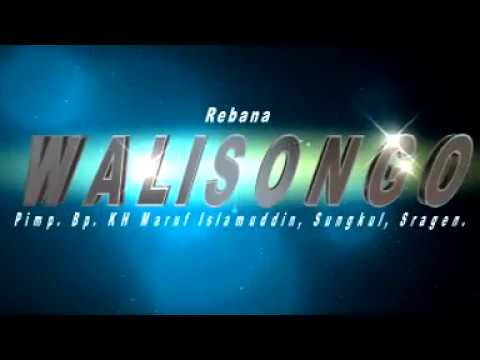 Pengantin Baru Sholawat & Rebana WALISONGO