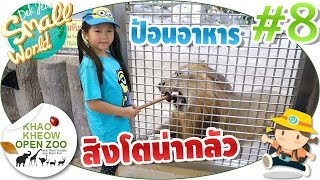 เด็กจิ๋วป้อนอาหารเสือ สิงโต น่ากลัวมาก (เขาเขียว#8)