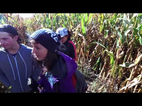 Verger Labonté Labyrinthes de maïs