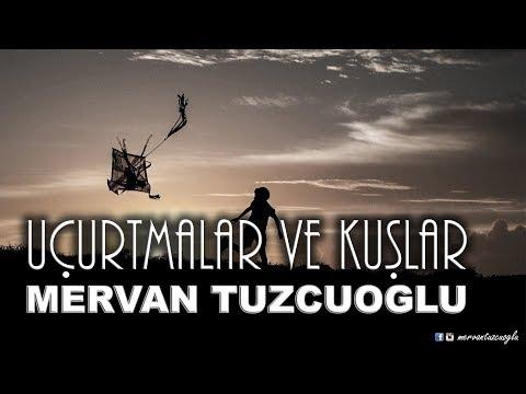 Mervan Tuzcuoğlu | Uçurtmalar ve Kuşlar