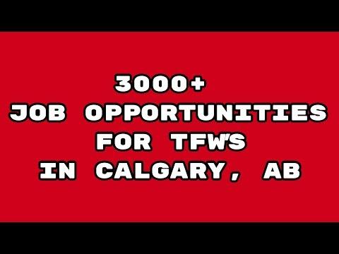3000+ JOB'S FOR TFW'S IN CALGARY, ALBERTA