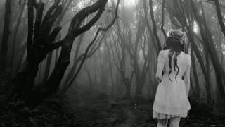 Hoia Baciu: So finster der Wald - so seltsam die Ereignisse.