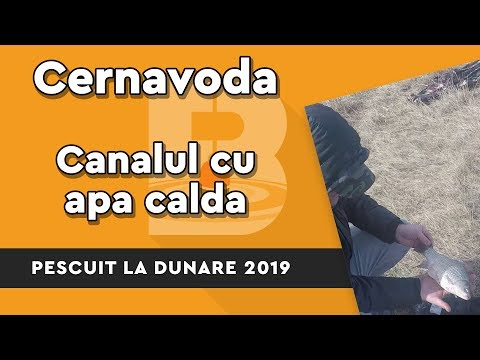 La Cernavoda, Februarie 2019