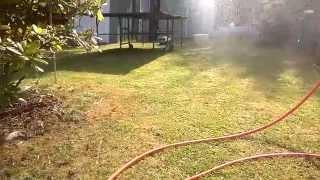 Maverick Scout/ SCX10 Hybrid Speed  Run in the Garden