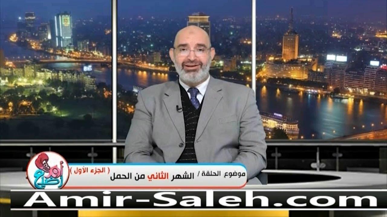 الشهر الثاني من الحمل (1)   الدكتور أمير صالح   برنامج أم ورضيع