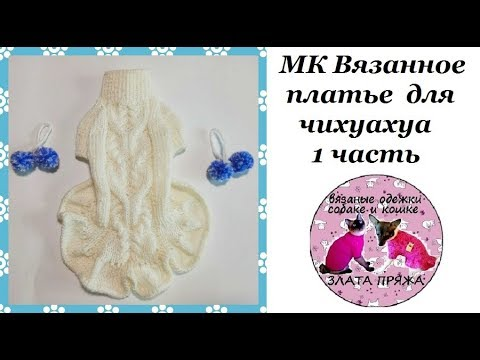 37. МК Платье для чихуахуа ч1