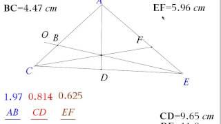 Investigate Menelaus Ceva Theorems