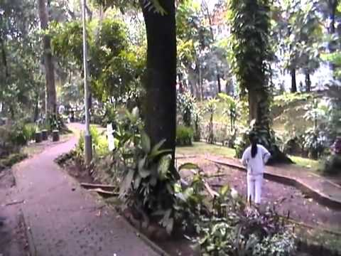Ruang Terbuka Hijau Cilaki Kota Bandung Youtube