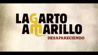 Video Desapareciendo Lagarto Amarillo