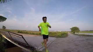 30km Paddy Field Run