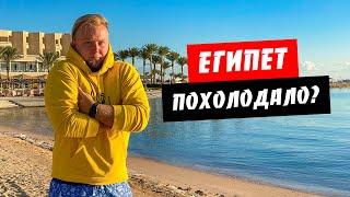 Египет Похолодало Охота на ската Подводный мир Albatros Palace Погода сегодня Хургада 2020