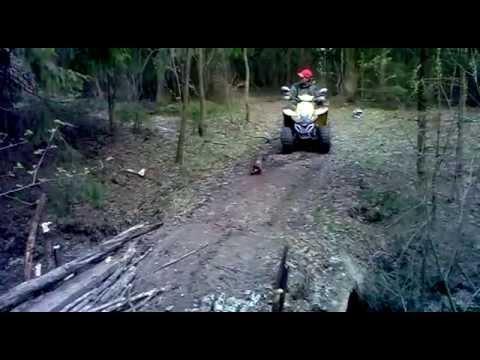 Квадроциклы.DINLI 110 D