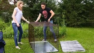 Сборка металлической клетки для собак