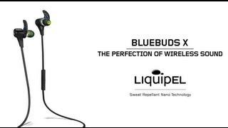 BlueBuds X Proper Fit Tutorial
