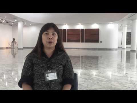 Thailand: South-East Asia Regional Meeting on Minamata Convention on Mercury, Bangkok