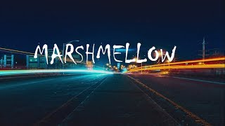 Silence [Slushii Remix] - Marshmello ft. Khalid [Lyrics ]