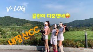 [vlog]골린이 모임 내장산CC  라운딩후 맛집~
