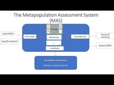 The Metapopulation System (MAS):  A Modular Stock Assessment Framework