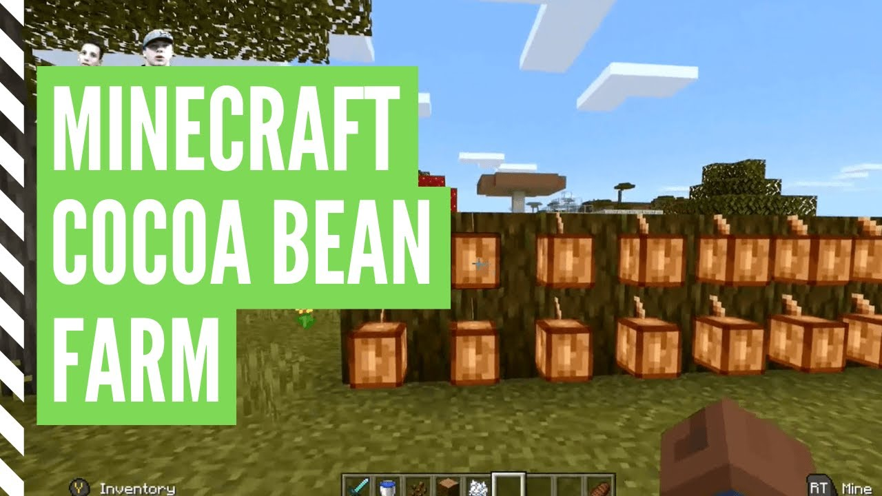 How To Grow COCOA BEANS In Minecraft [Minecraft Cocoa Beans Farm]