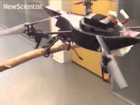 Drone with legs can perch on a branch