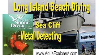 Wreck Valley Beach Treasure Dive Metal Detector