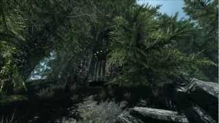Pinewood Village Mod for Skyrim by Kraggle