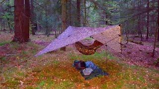 Ashurst New Forest - Solo Overnighter - DD Hammock and Tarp