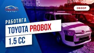 Симпатяга-Работяга.Обзор Toyota Probox 2014 без пробега по РФ.Авто из Японии.