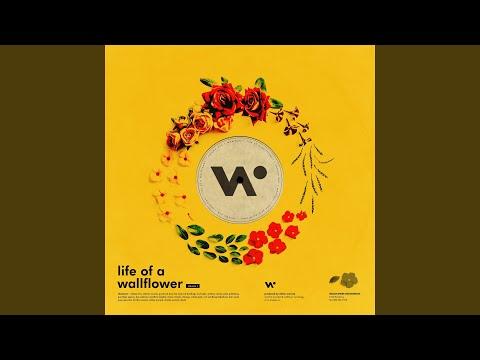 Wallflower Mp3