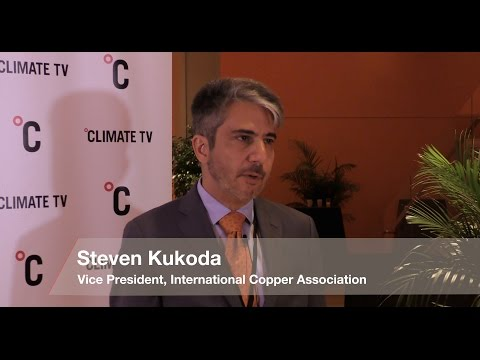 Steven Kukoda, Vice President, International Copper Association