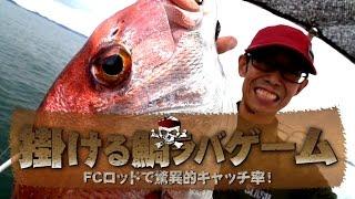 掛ける鯛ラバゲームでマダイ連発!in岡山
