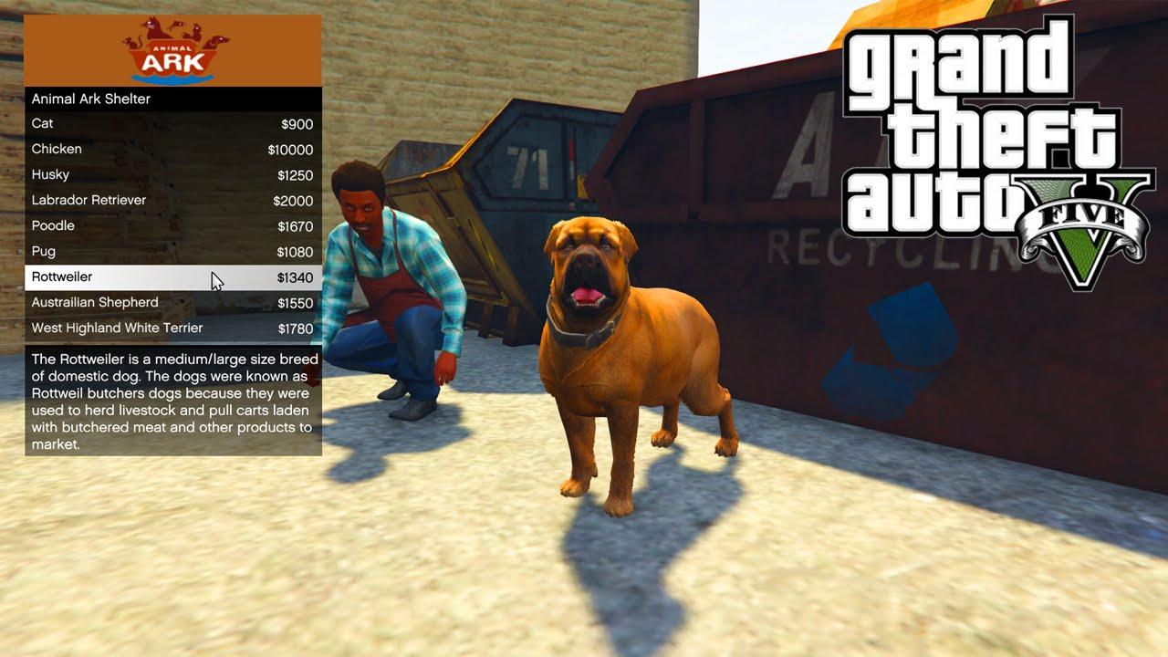 GTA 5 PC Mods - ANIMAL PET SHOP MOD!!! - GTA 5 Pet Mod w/ Wildlife ...