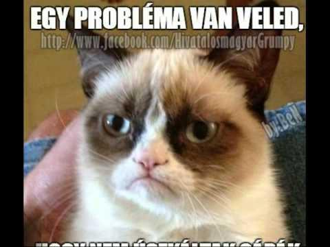 Grumpy Cat Fuck